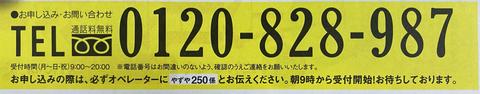 AD0CDCE5-7B98-499B-BD4B-679814DF4930.jpg